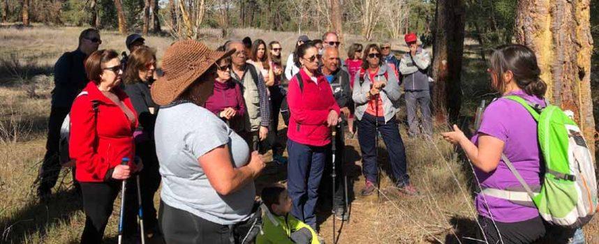 Un recorrido por la Senda de la Minguela en Vallelado culmina el ciclo de Rutas de Invierno de la Diputación