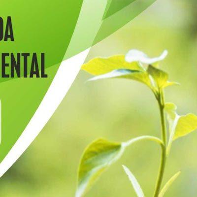 Jornada medioambiental en Fuenterrebollo