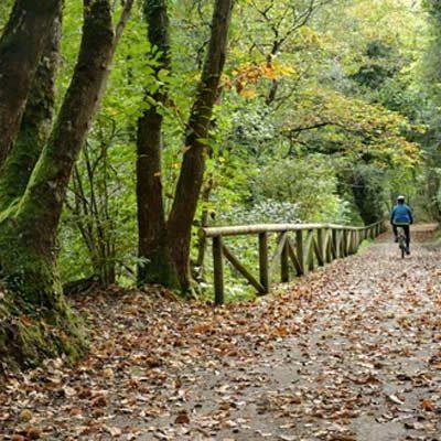 Fallece un ciclista valleladense al precipitarse por la Senda del Oso en Asturias