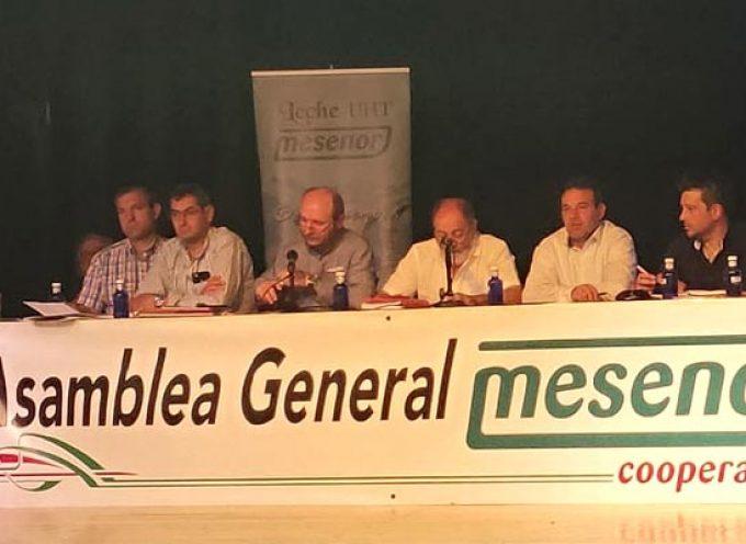 Mesenor cerró 2018 con una cifra de negocio récord de más de 52 millones de euros