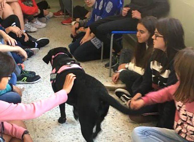 Abril acercó el programa de apoyo educativo asistido por perros al IES Marqués de Lozoya