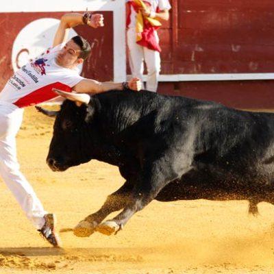 El vallisoletano Eusebio Sacristán `Use´ gana el Concurso de Cortes de Cuéllar