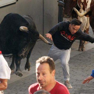 El tercer encierro cuellarano deja un herido por asta de toro al final de su recorrido