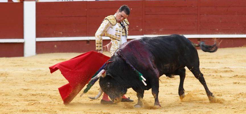 Reses de Partido de Resina y Miura en dos corridas de toros los días 19 y 20 de junio en Cuéllar