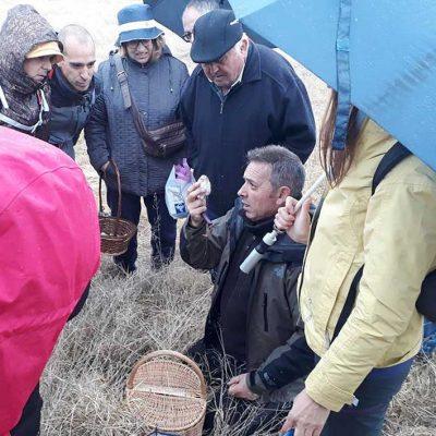 Fuenterrebollo se adentra en pinares y dehesas durante las  V Jornadas Micológicas