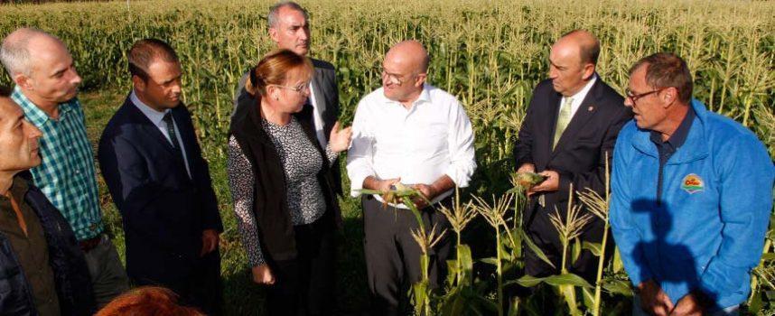 """El consejero de Agricultura manifiesta en Sanchonuño su """"absoluto apoyo"""" a la recarga de El Carracillo"""