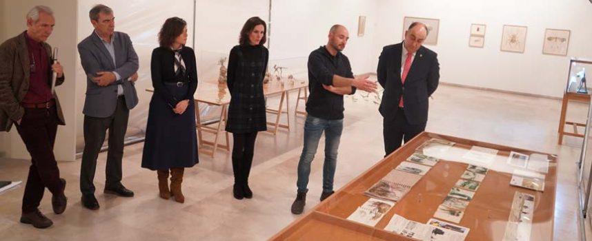 Las obras del cuellarano José Mª Yagüe abren el proyecto 'Semillero de arte' en el Museo Esteban Vicente