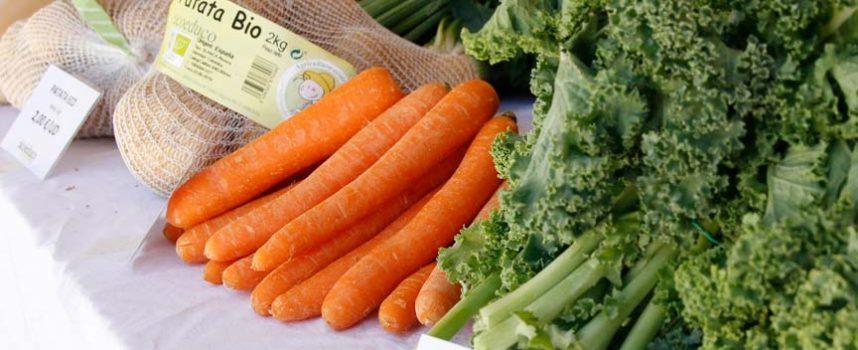 La Junta y el sector alimentario piden calma y garantizan el abastecimiento constante