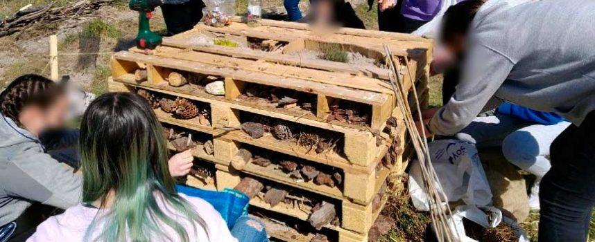 Alojamiento para insectos en el hotel creado por los alumnos del IES Marqués de Lozoya