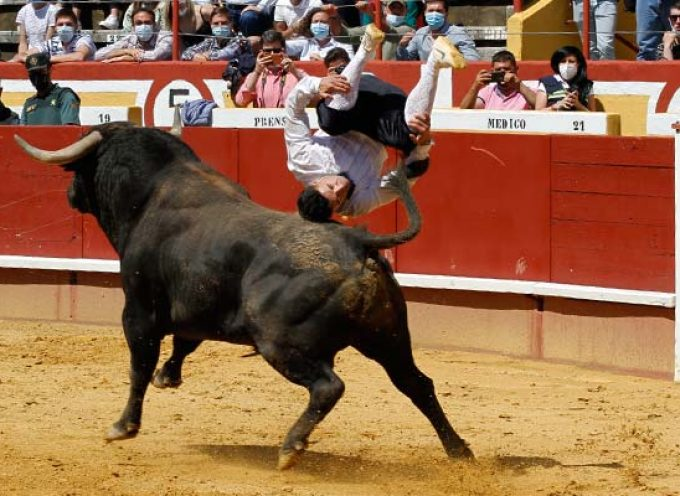 La plaza de toros de Cuéllar ha reabierto sus puertas con una exhibición de cortes, saltos y quiebros