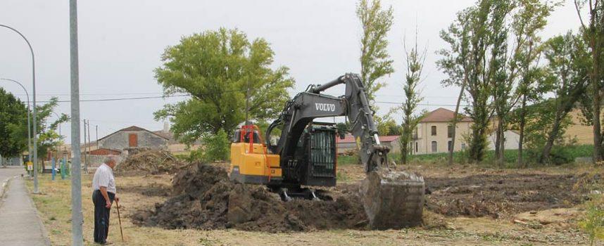 El Ayuntamiento acomete la tala de chopos en Dehesa de Cuéllar para crear un parque
